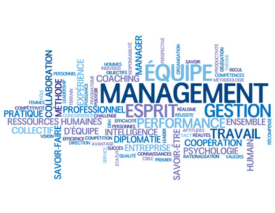 c-performance-conseil management